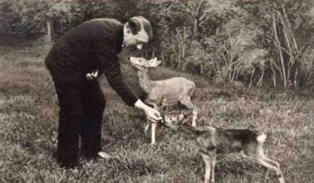 Hitler-était-végétarien